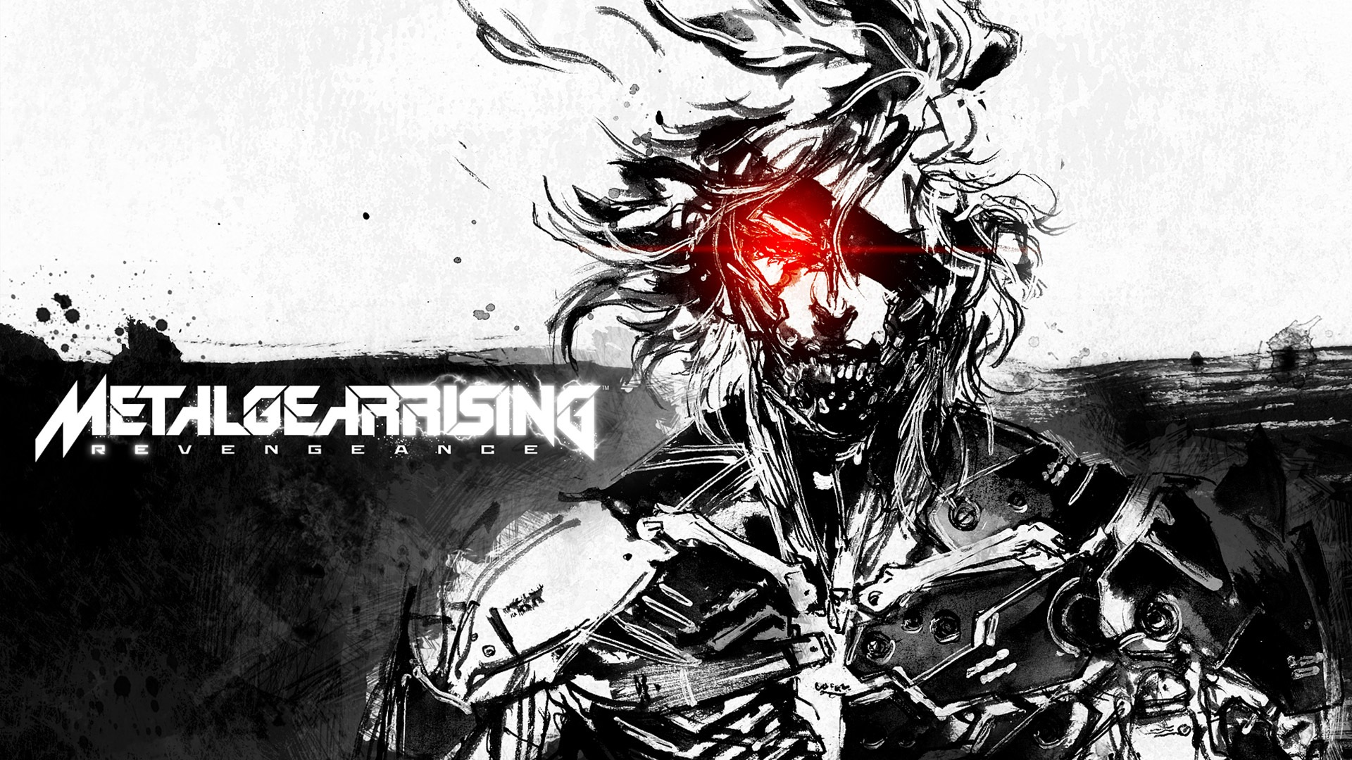 Free Download Metal Gear Rising Revengeance Computer Wallpapers