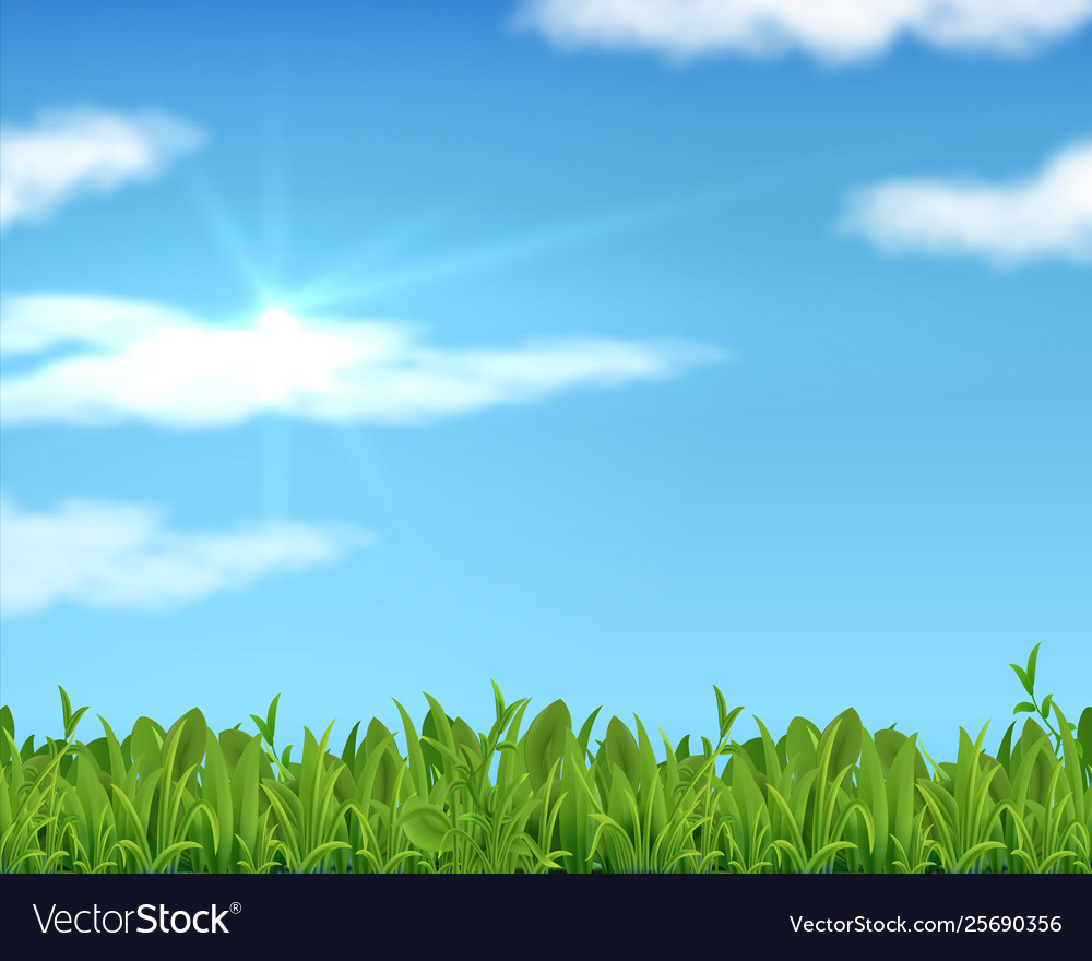 Realistic lawn and sky 3d spring grass background Vector Image 1000x880
