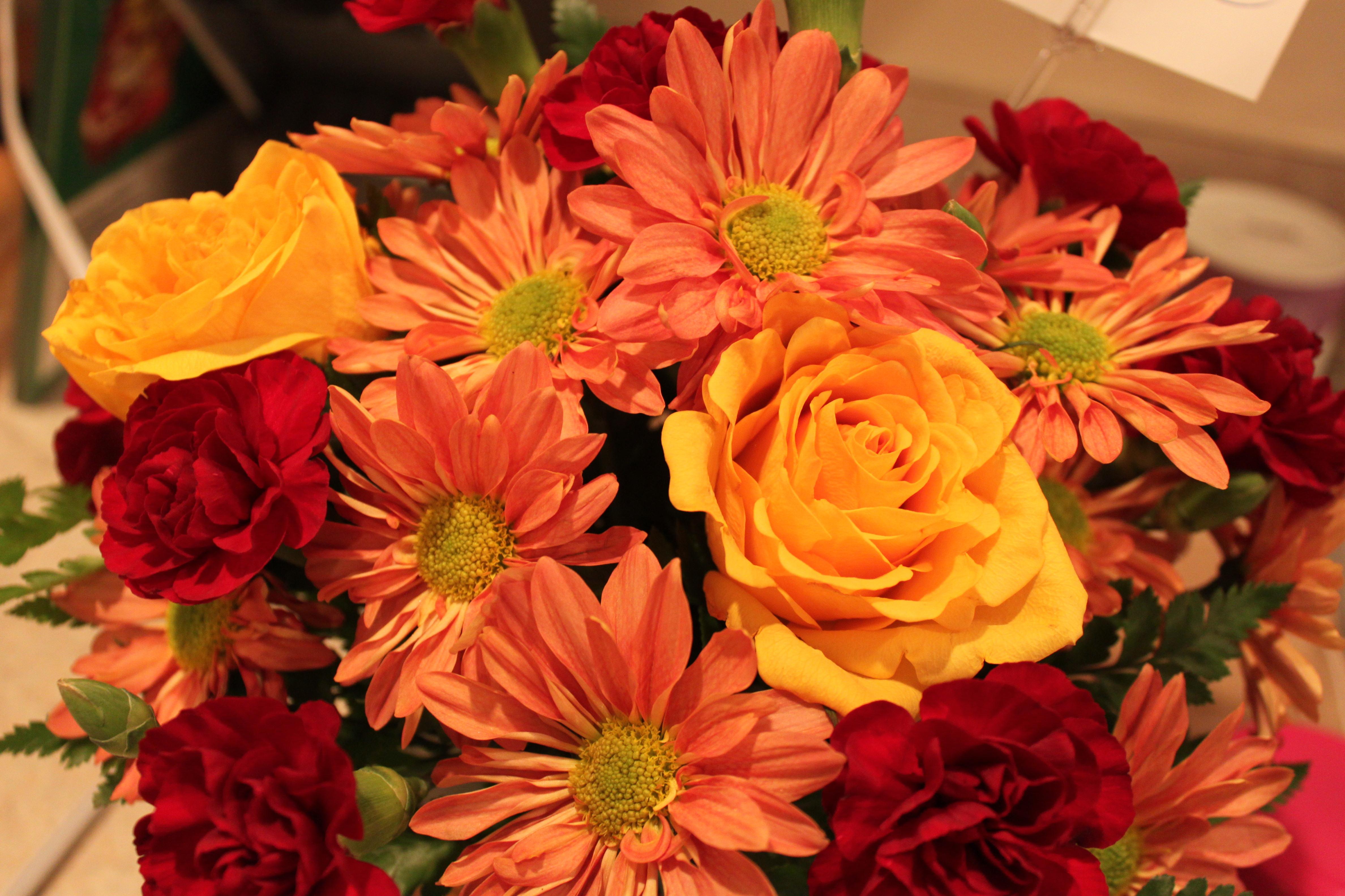 Beautiful Fall Flowers Wallpaper WallpaperSafari