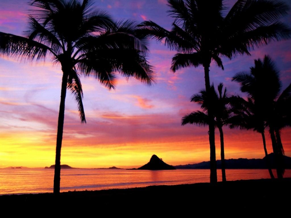 Hawaiian Beach Sunset Wallpaper Background: Hawaiian Sunset Wallpaper