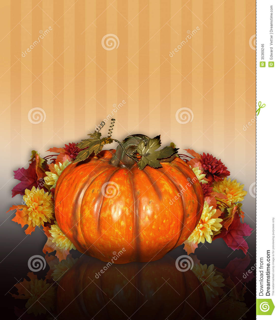 Fall Flowers Royalty Stock Images Image   InspiriToo 1130x1300