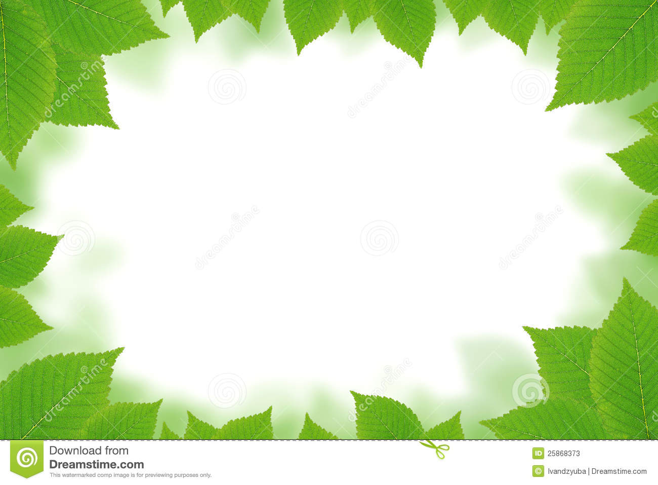 Green Leaf Wallpaper Border HD Wallpapers on picsfaircom 1300x957