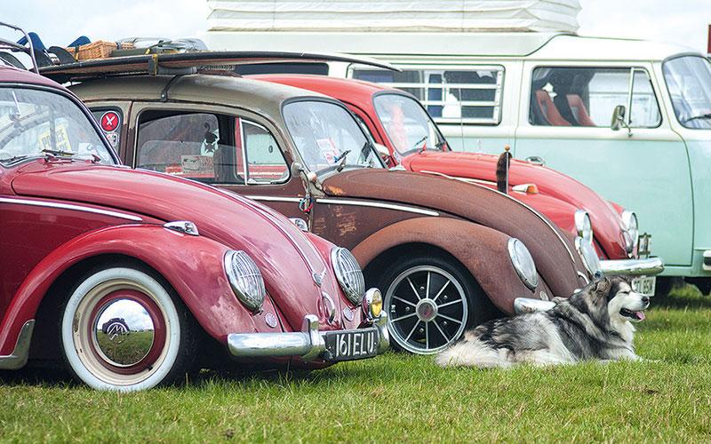 Air cooled 14 VW Show photos   VolksWorld 800x500