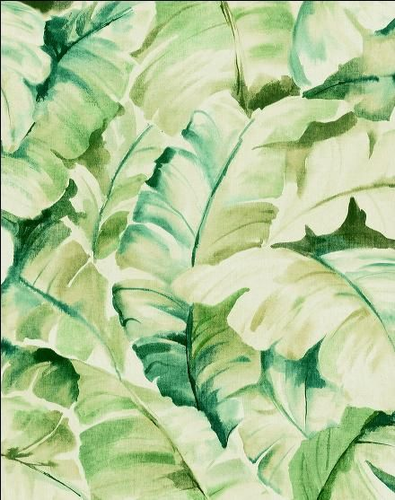Banana leaf wallpaper House ideas Pinterest 440x557