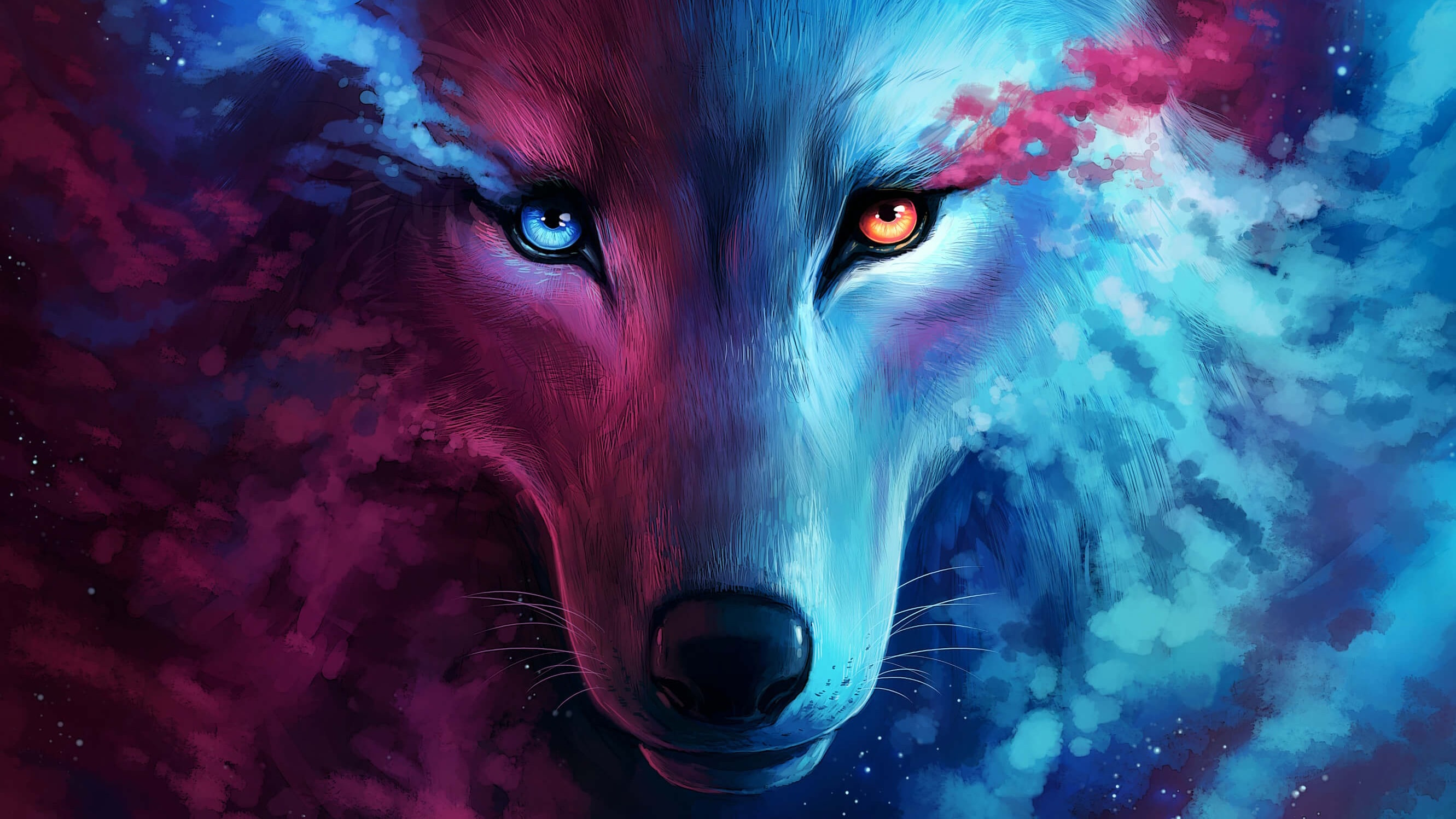 Wolf Wallpapers 4K   KoLPaPer   Awesome HD Wallpapers 2662x1497