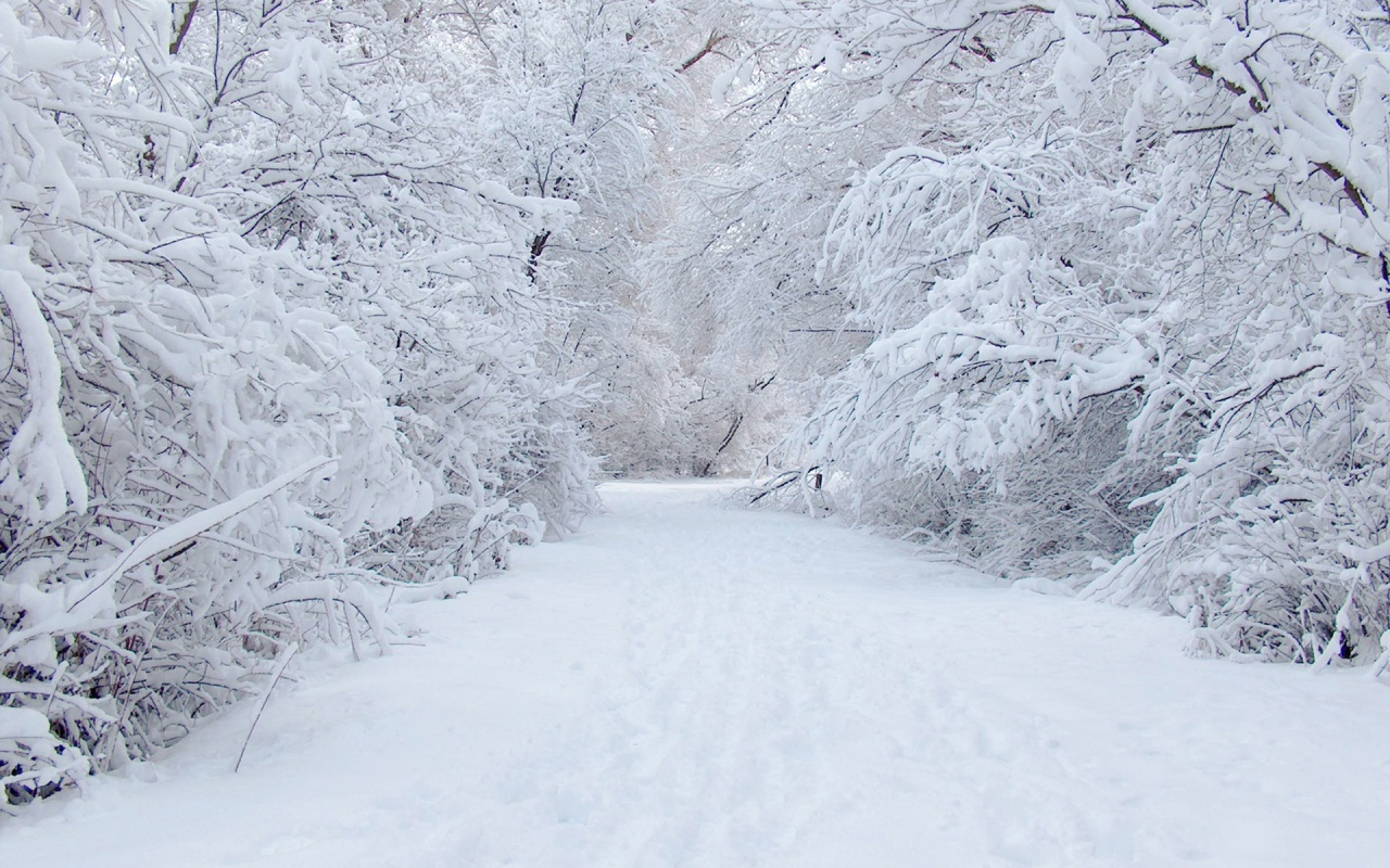 3d winter scenes wallpaper - photo #13
