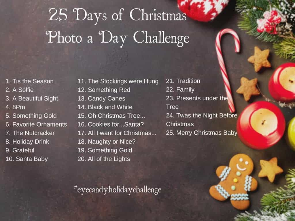 3rd Annual 25 Days of Christmas Photo A Day Challenge 1024x768