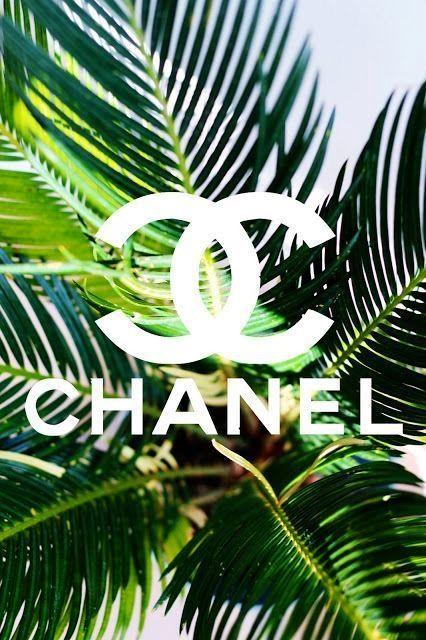 Chanel wallpaper iPhoneiPad wallpapers Pinterest 426x640