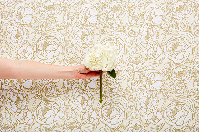 chasing paper   peonies pattern   removable wallpaper 650x432