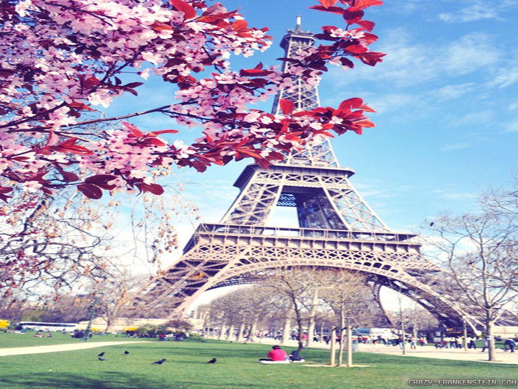 Paris in Springtrees in blossom flowers everywhere Paris 1024x768