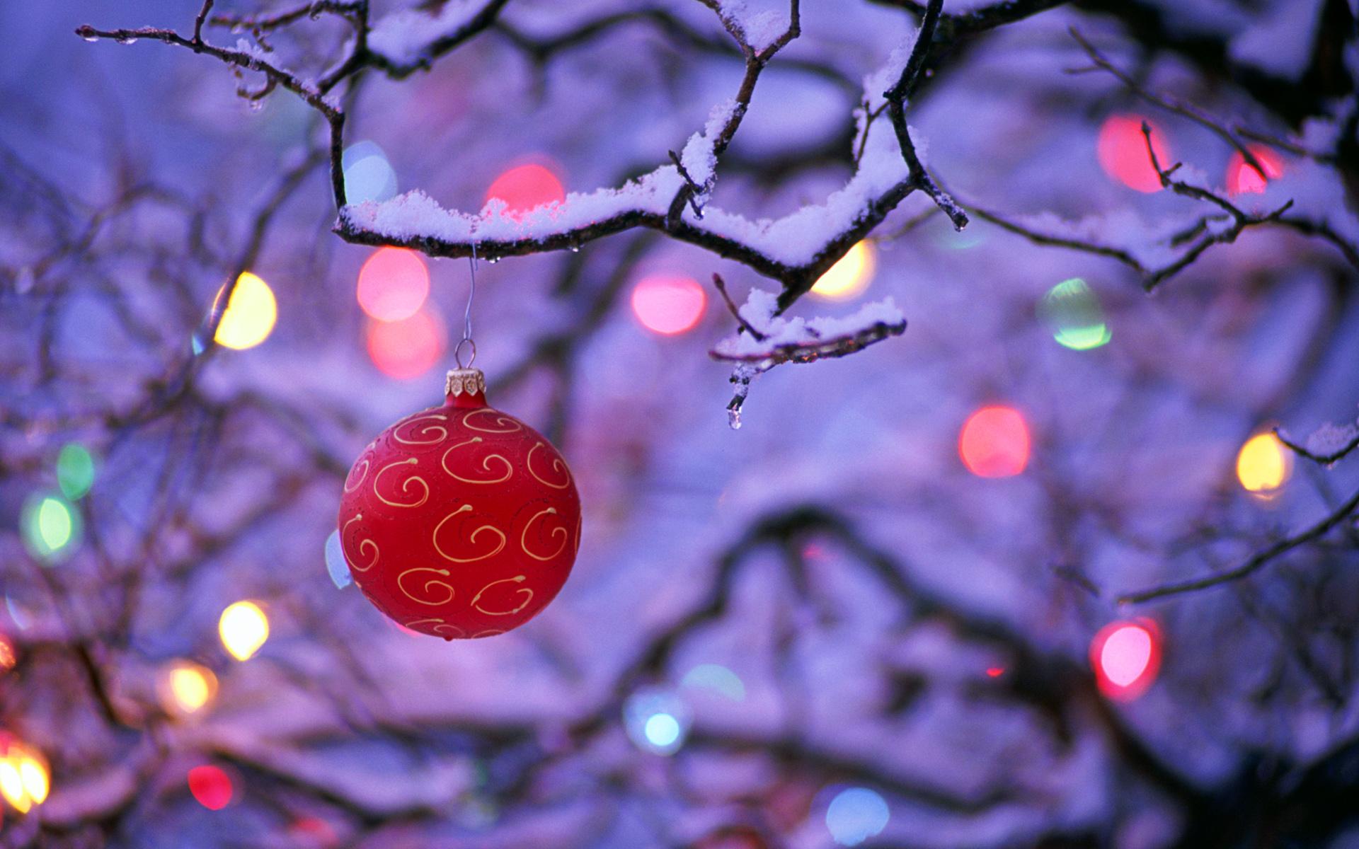 2015 Christmas desktop photos   wallpaprs images pics 1920x1200