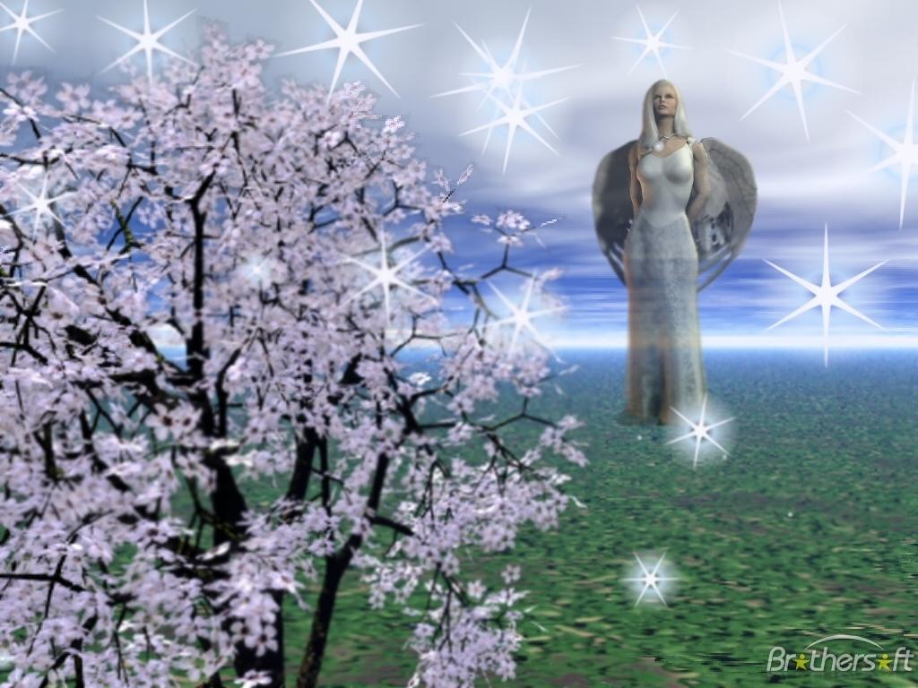 Download Angel Star Angel Star 1 Download 1024x768