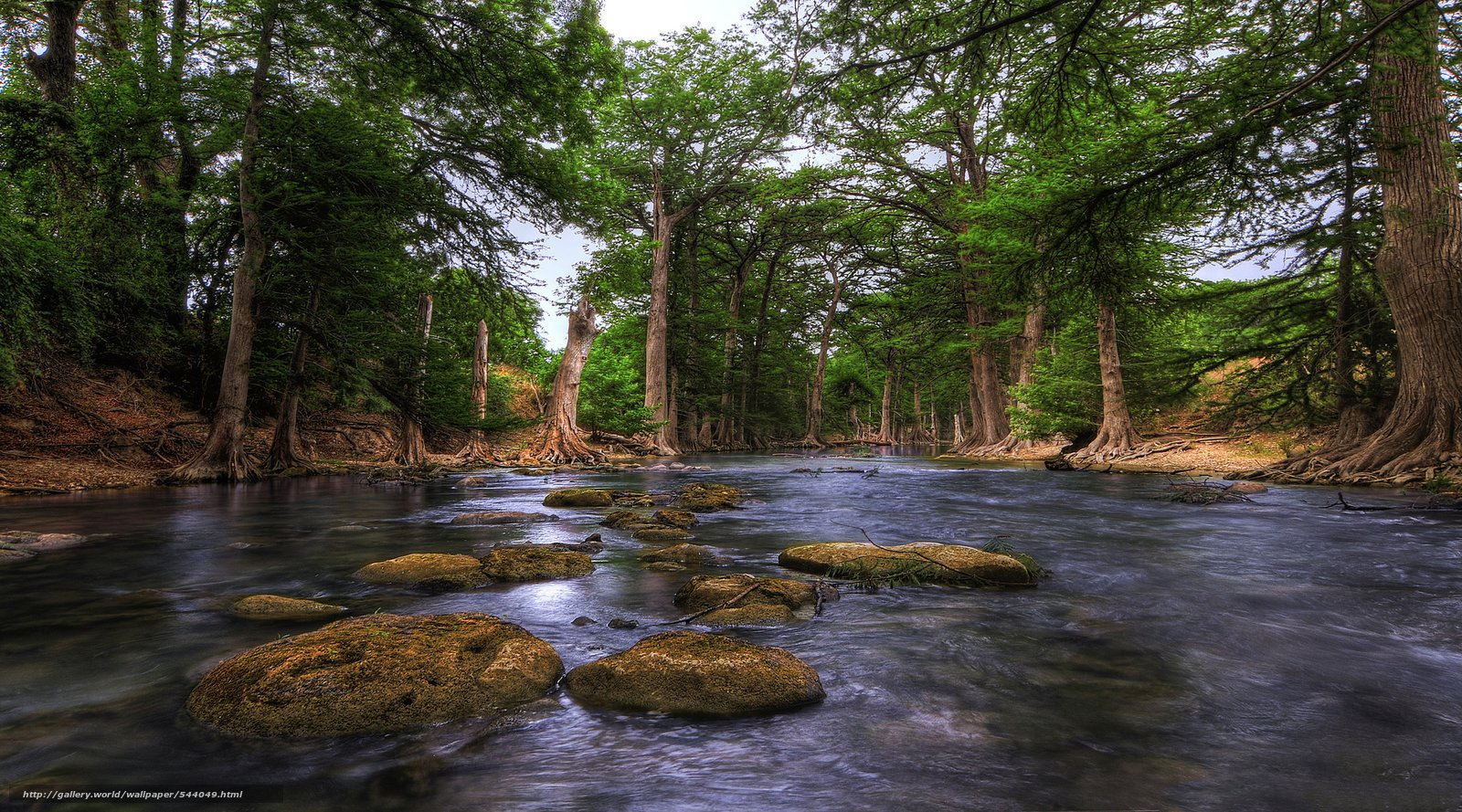 wallpaper Guadalupe River Hill Country texas USA desktop 1600x889
