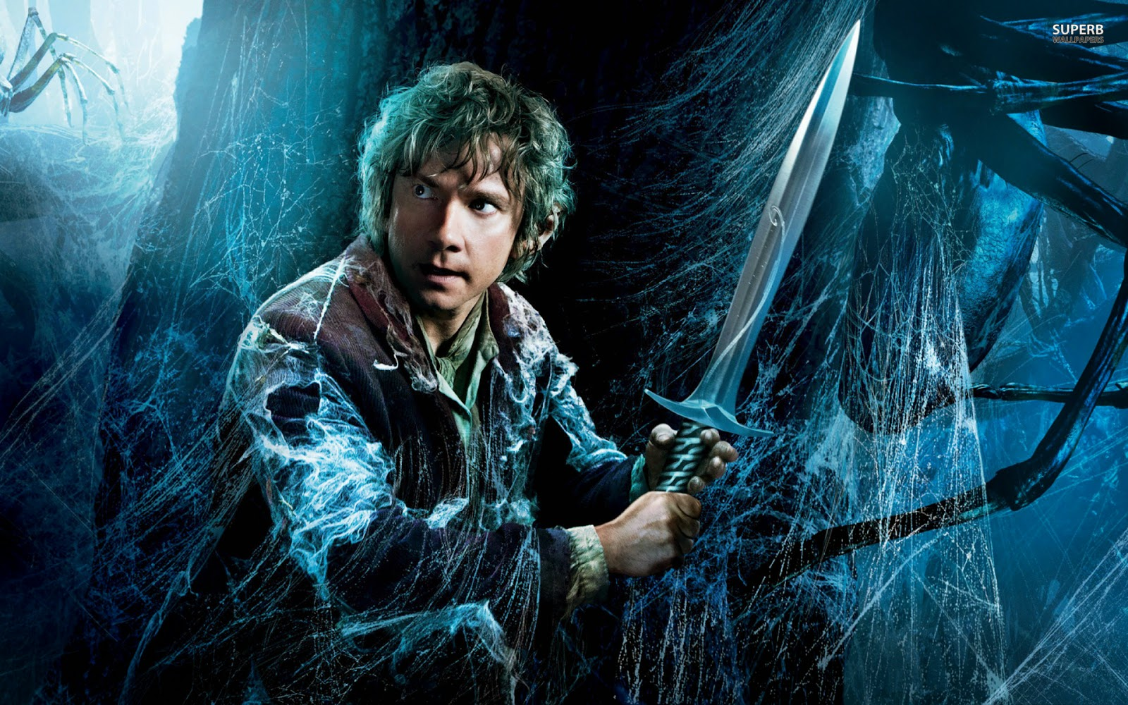 the hobbit the desolation of smaug awesome hd wallpapers 1920 x 1080 1600x1000