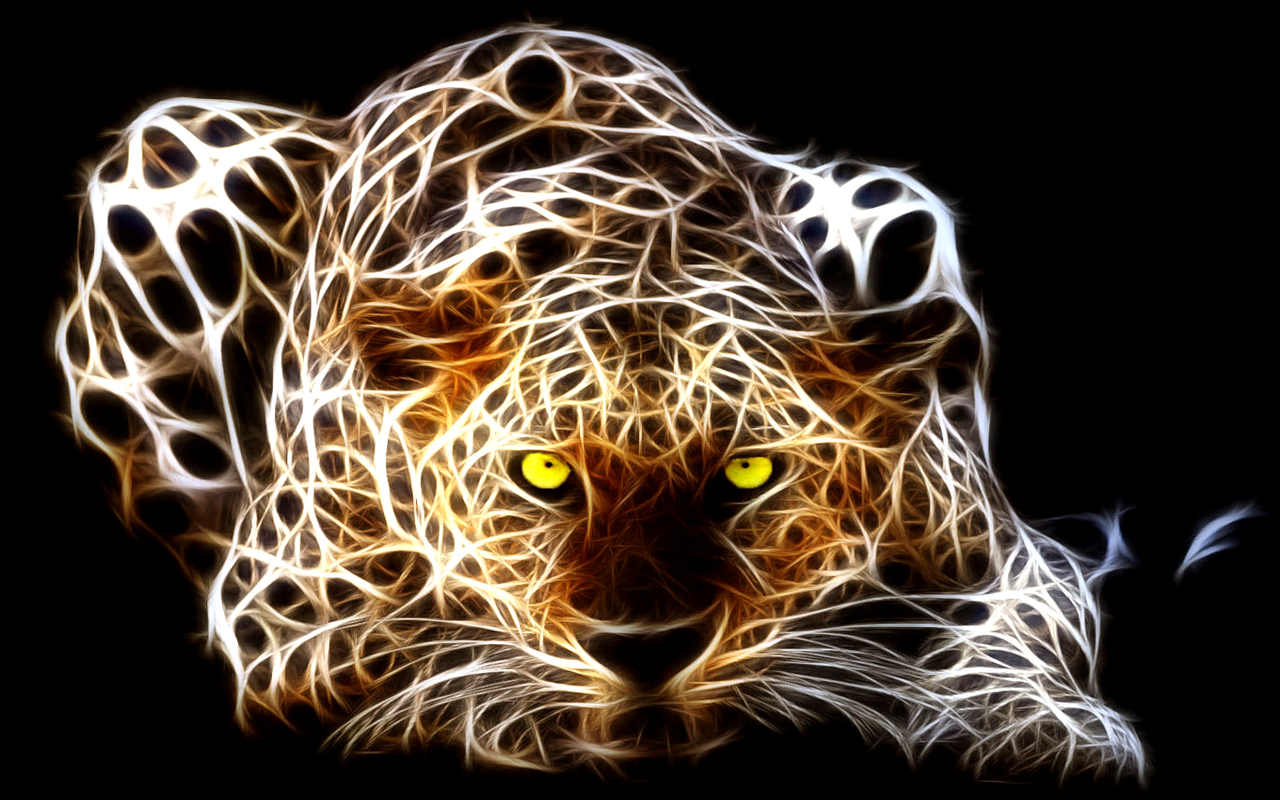 Wallpapers HD Wallpapers Tiger Wallpapers HD Tiger Wallpapers for 1280x800