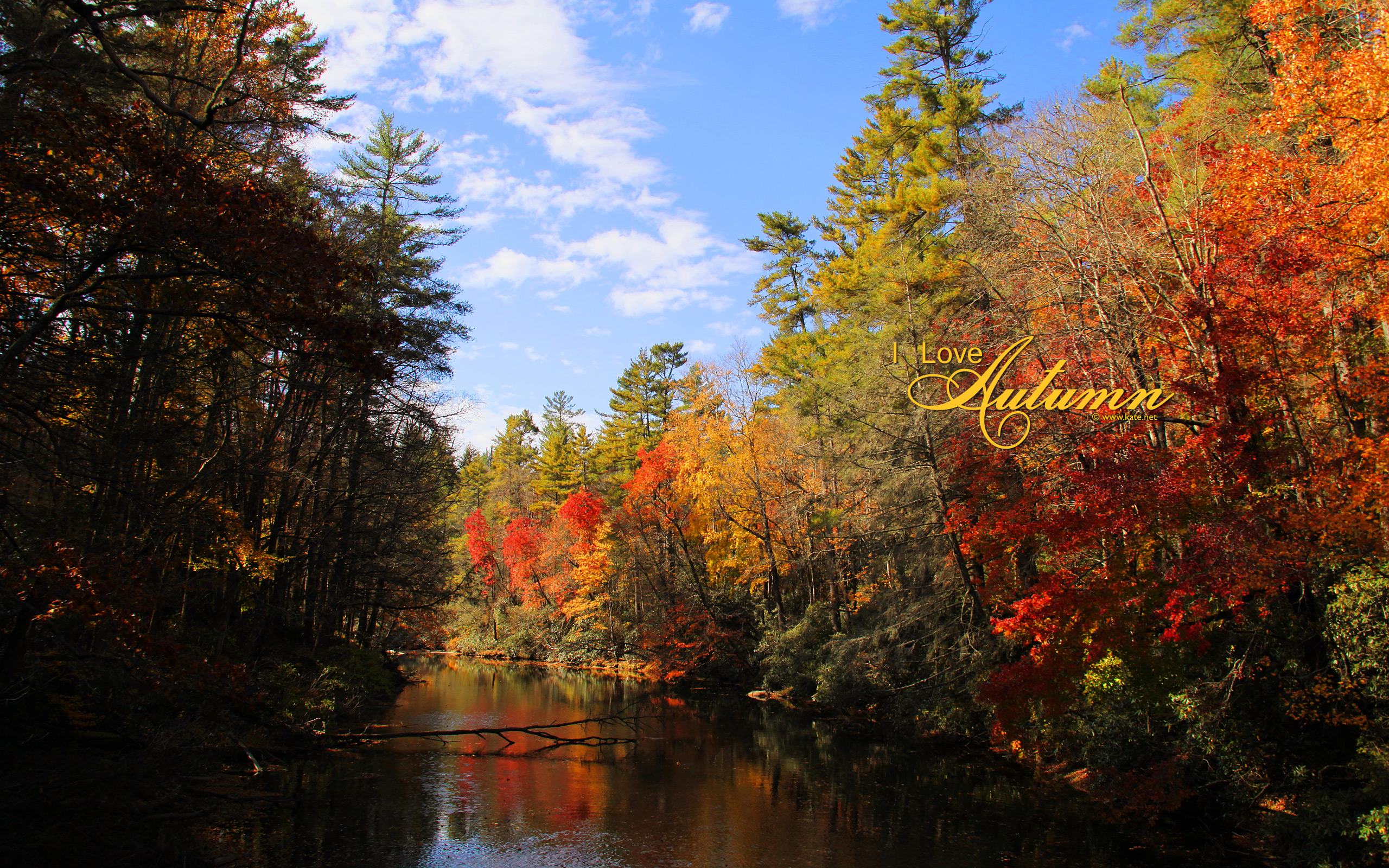 wallpaper near linville falls in nc photo wallpaper kate net created 2560x1600