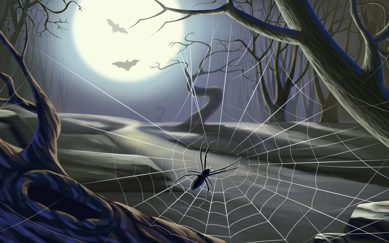 Spider web on Halloween wallpaper 11201 1280x800