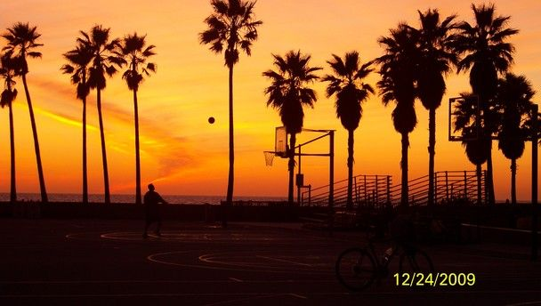 Venice Beach Wallpaper 608x344
