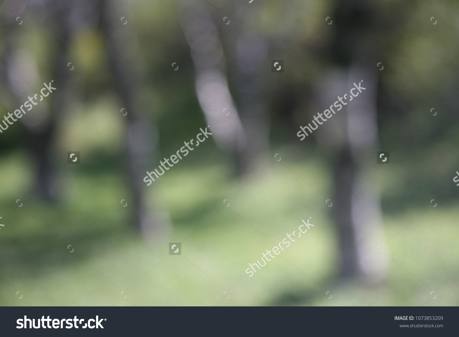 Abstract Vague Background On Spring Forest Stock Photo Edit Now 1500x1101