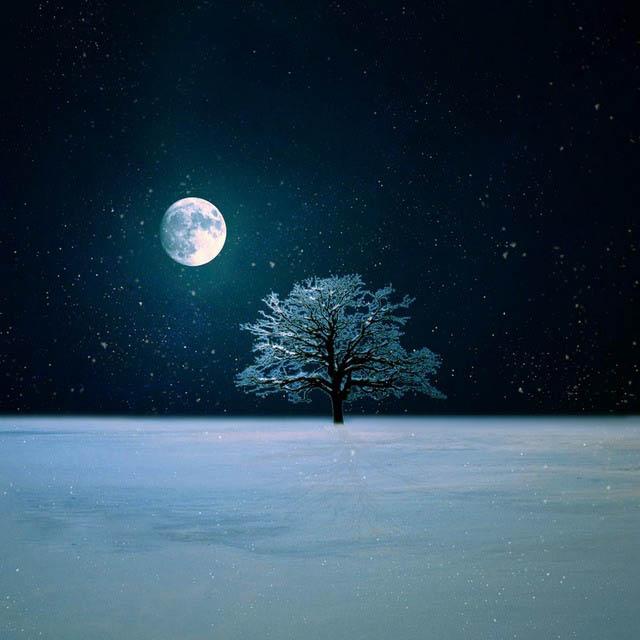 Winter Night Live Wallpaper by BaxiaArt 640x640