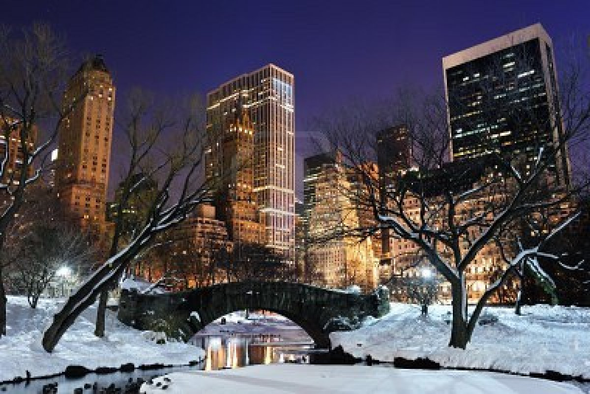 FUNNY GALLERY Central park winter night 1200x801