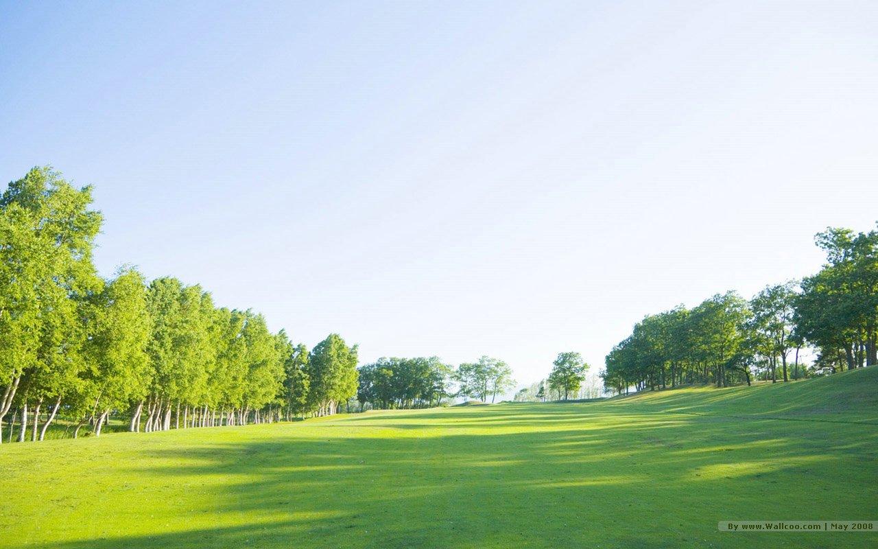 netgrassland lush trees in sunny day 1280x800 NO38 Desktop Wallpaper 1280x800