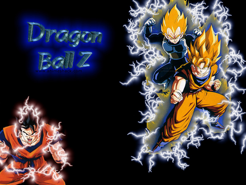 Dragon Ball Z Moving Pictures   Desktop Backgrounds 800x600