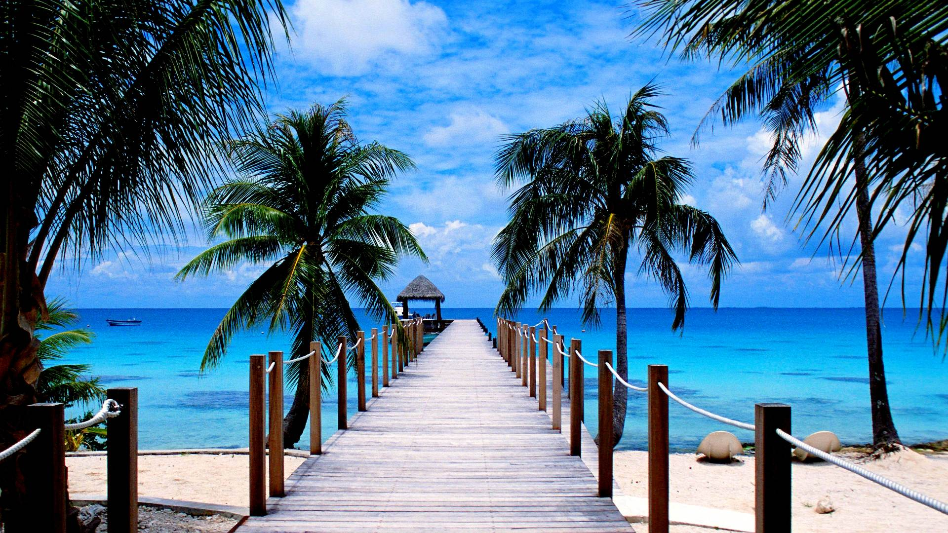 Tropical Beach Paradise Wallpaper High Quality 1920x1080