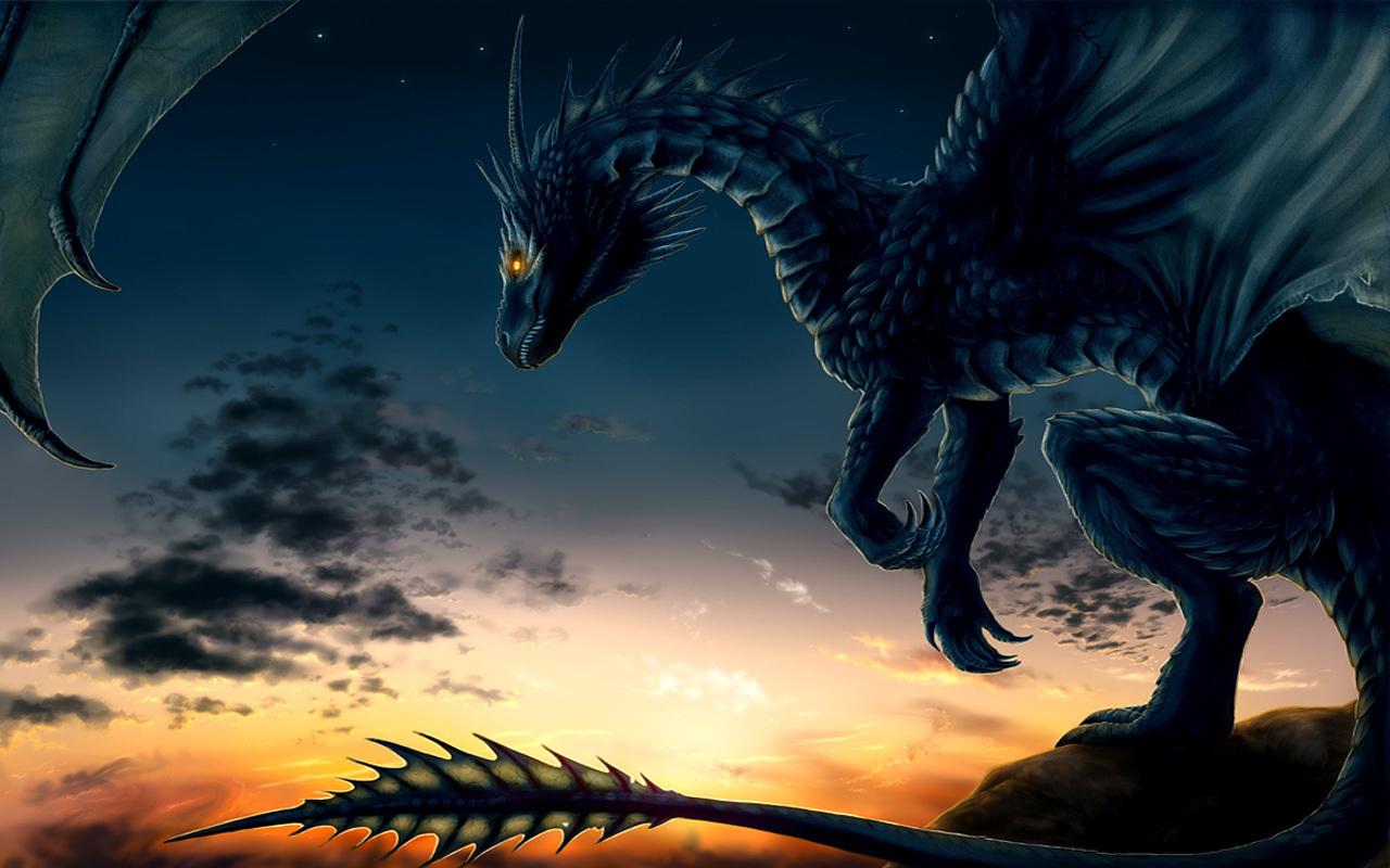 Dragon Wallpaper   Dragons Wallpaper 13975575 1280x800