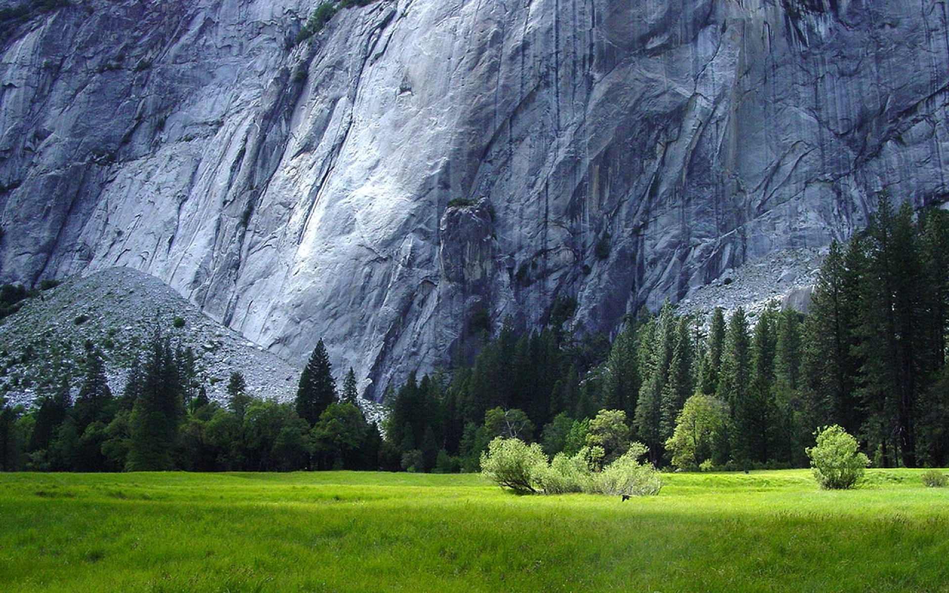 Yosemite National Park Scenery wallpapers Yosemite National Park 1920x1200