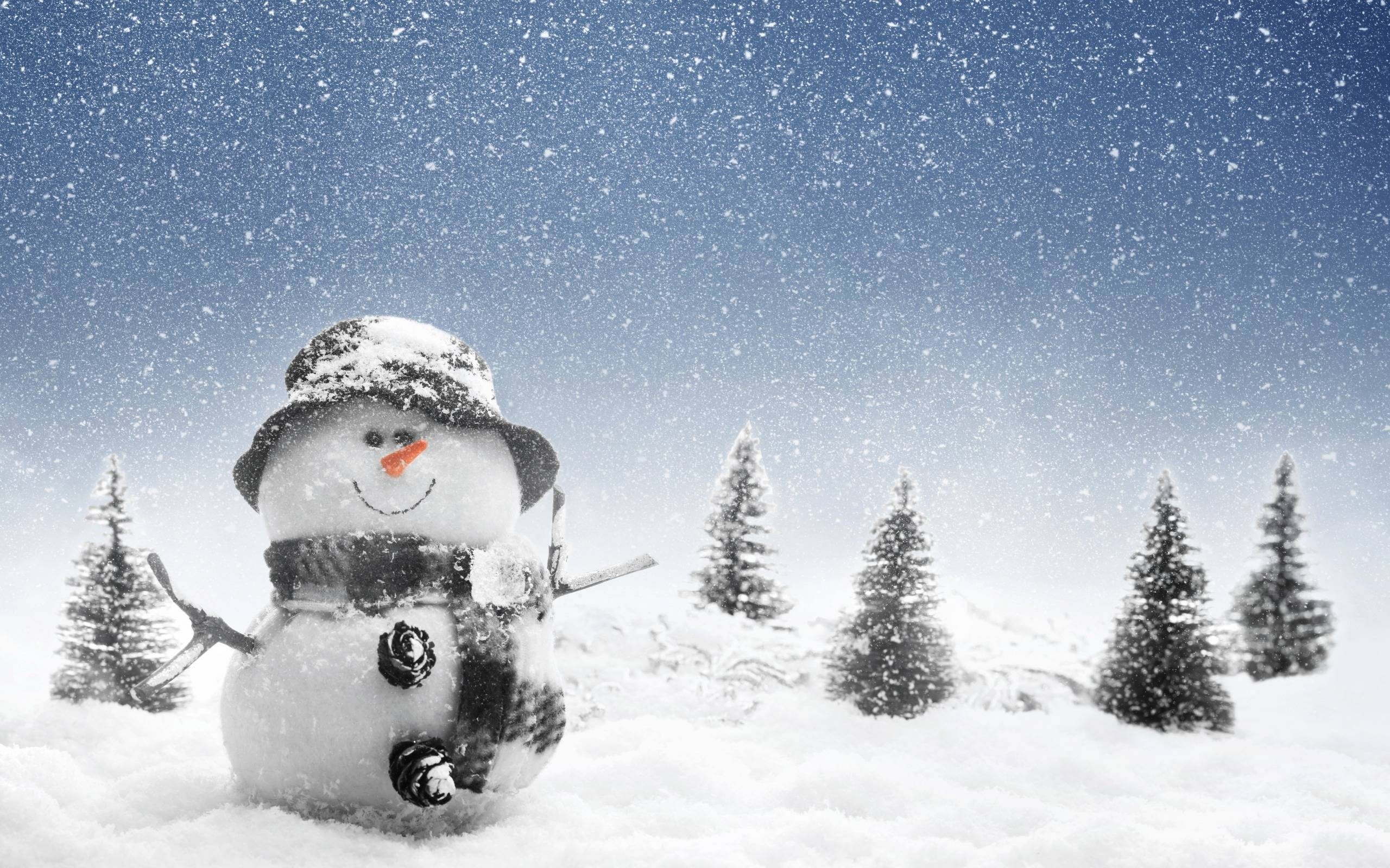 Snowman Wallpapers 2560x1600
