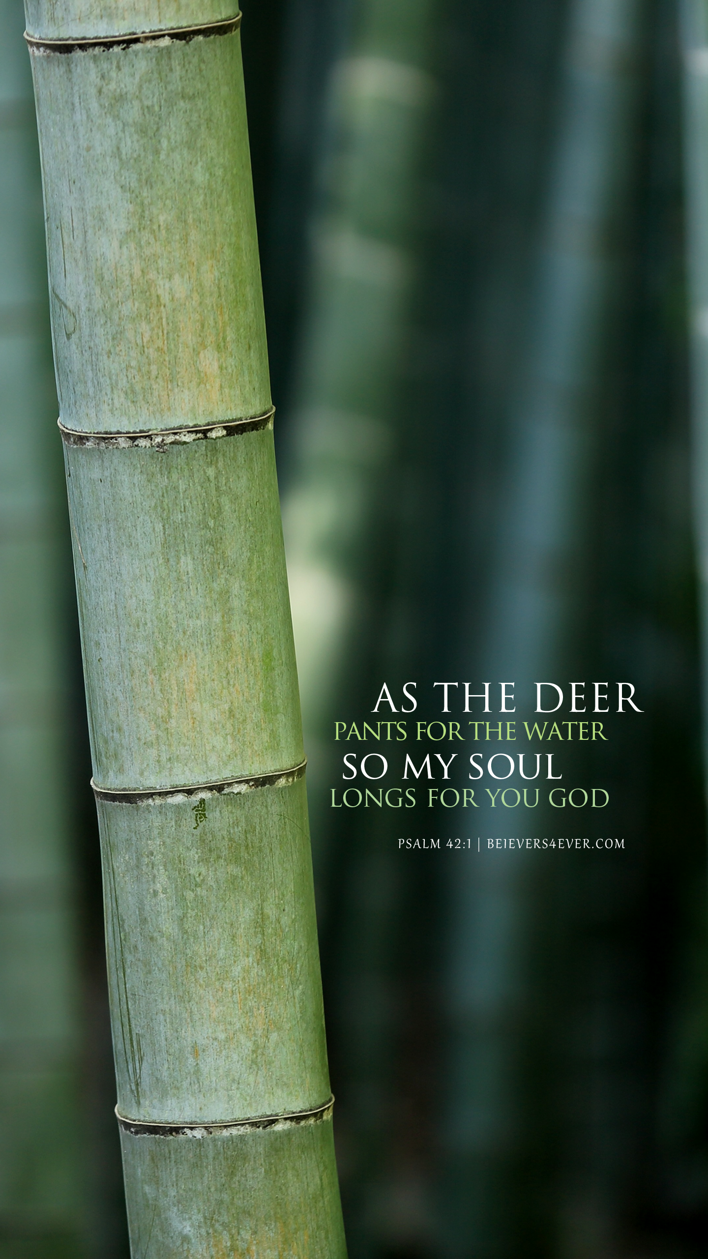 As the deer Lock Screens Cases Iphone wallpaper quotes bible 1440x2561