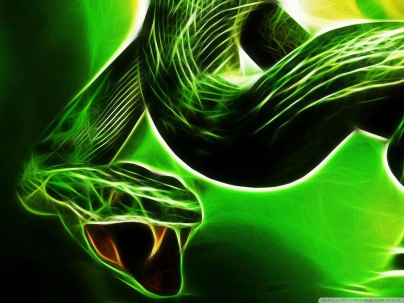 neon snake wallpaper wallpapersafari