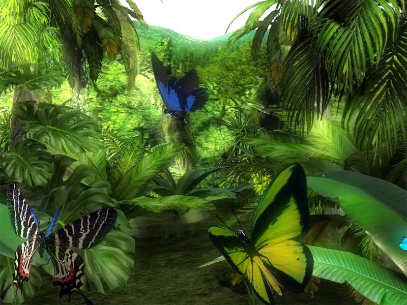 Forest Butterflies 3D Screensaver 10 Download 800x600