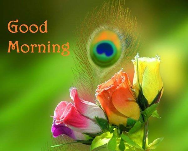 Good Morning Beautiful Wallpapers Beautiful Good Morning...