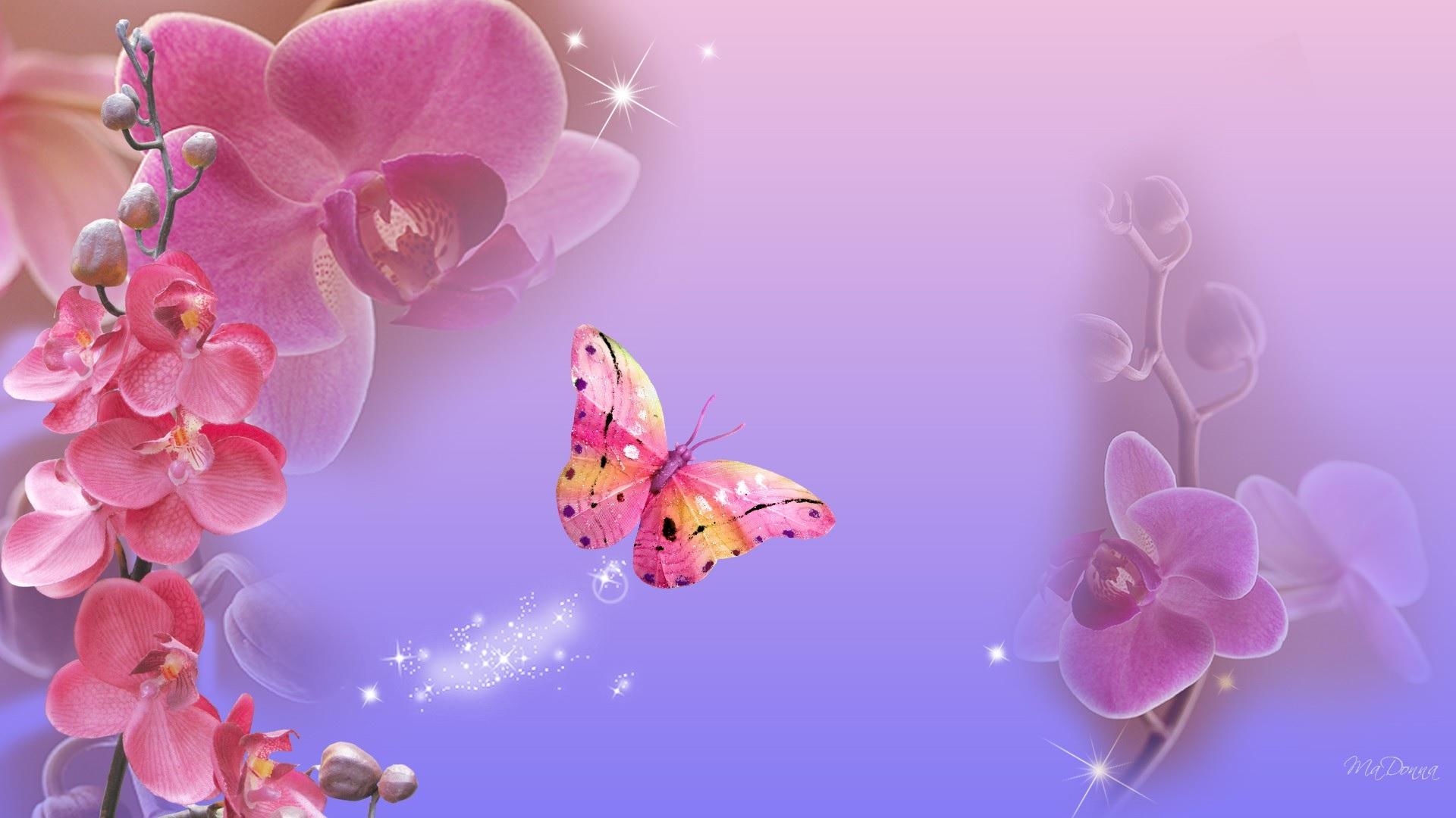 Бабочка фон