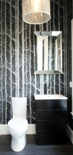 Im still loving the cole and son birch tree wallpaper Think it would 236x500