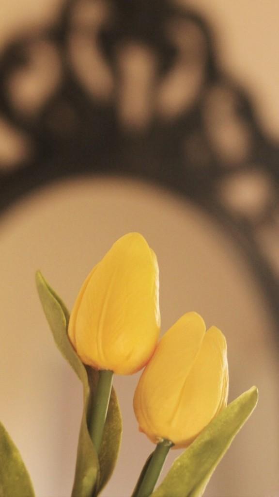 Yellow Tulips Wallpaper   iPhone Wallpapers 576x1024