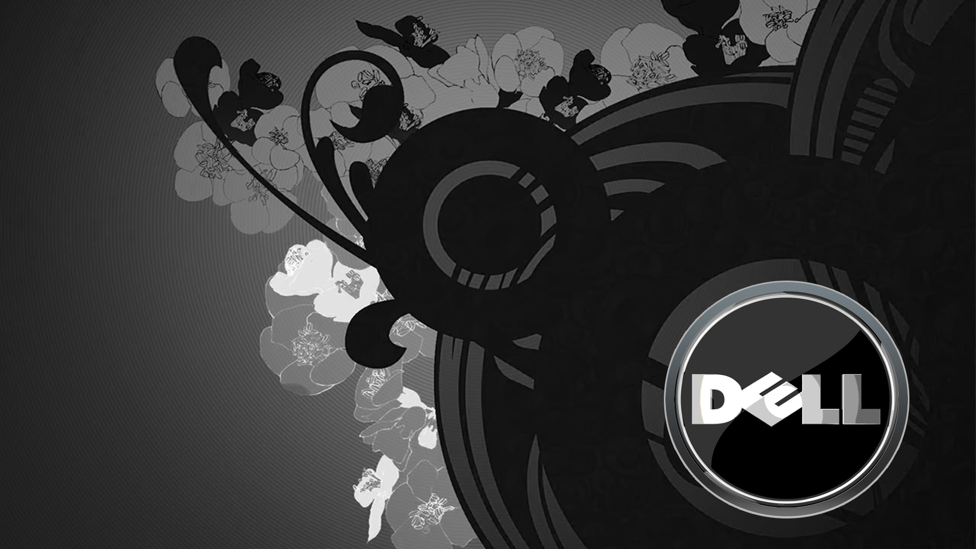 48] Dell Inspiron Wallpapers Download on WallpaperSafari 1920x1080