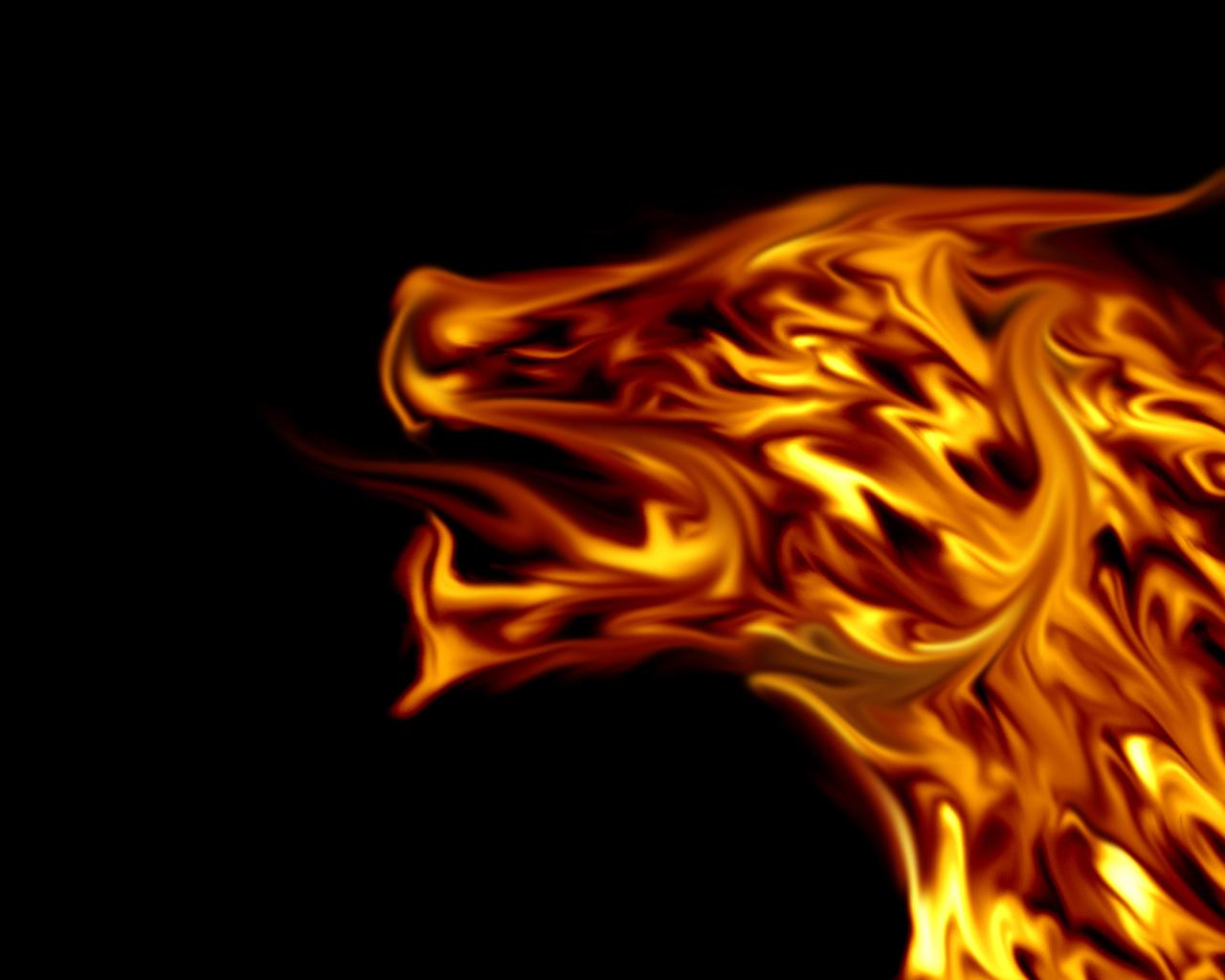 Fire Dragon   funkyrach01 Wallpaper 16754539 1280x1024