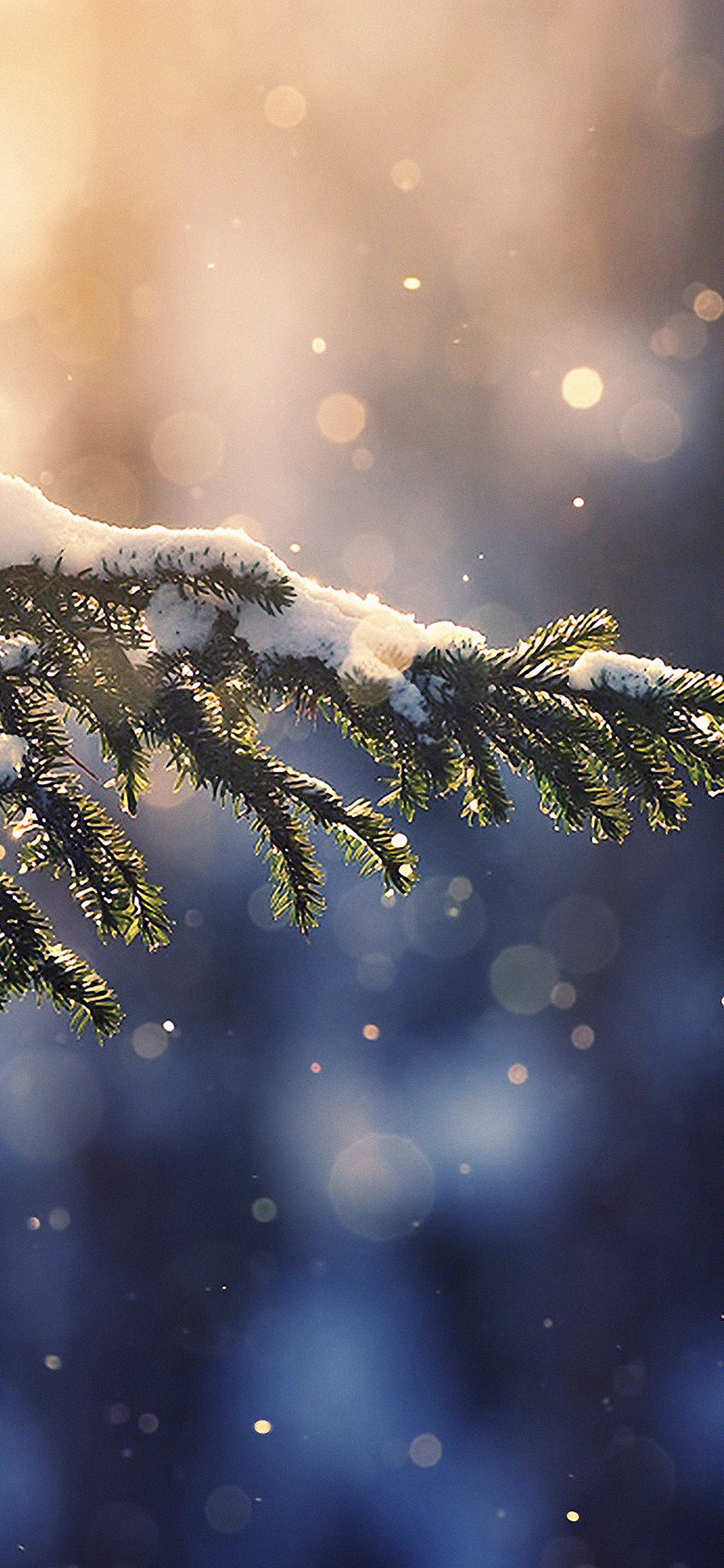 Iphone X Winter Backgrounds   1125x2436   Download HD Wallpaper 1125x2436