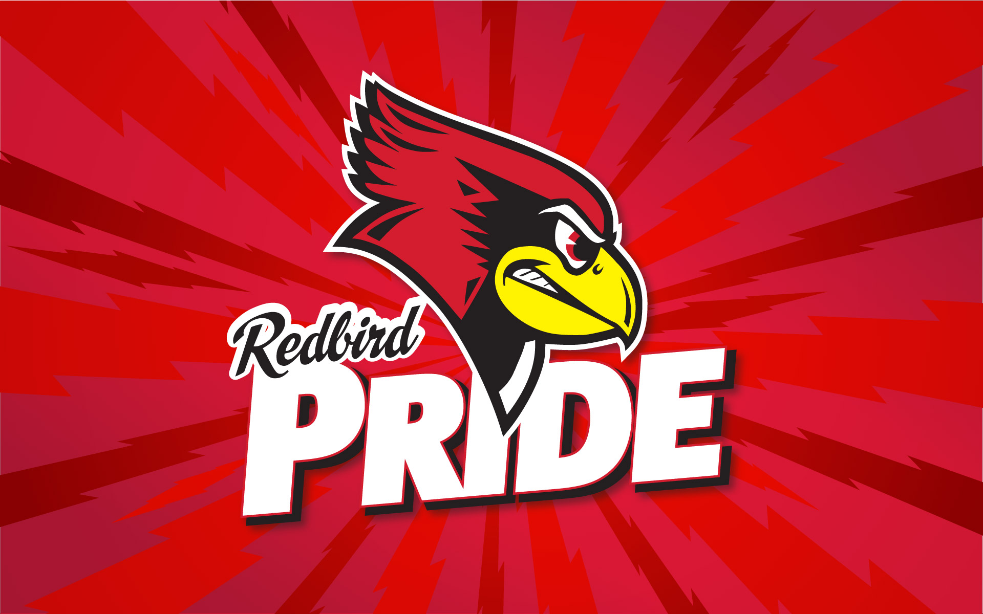 Illinois State University Redbirds wallpaper 310308 1920x1200