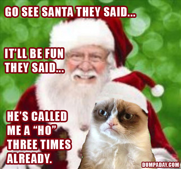 Laugh at 17 Funniest Grumpy Cat Pictures 620x576