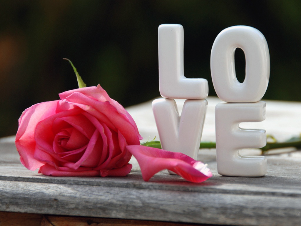 Free Download Nice Love Heart With Rose Hd Wallpapers Only Hd