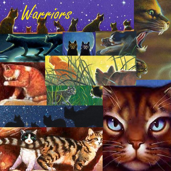 My Top Collection Warriors cats wallpaper 3 600x600