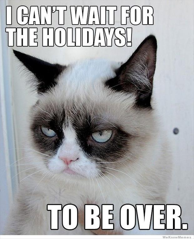 Image for Grumpy Cat Images 620x762