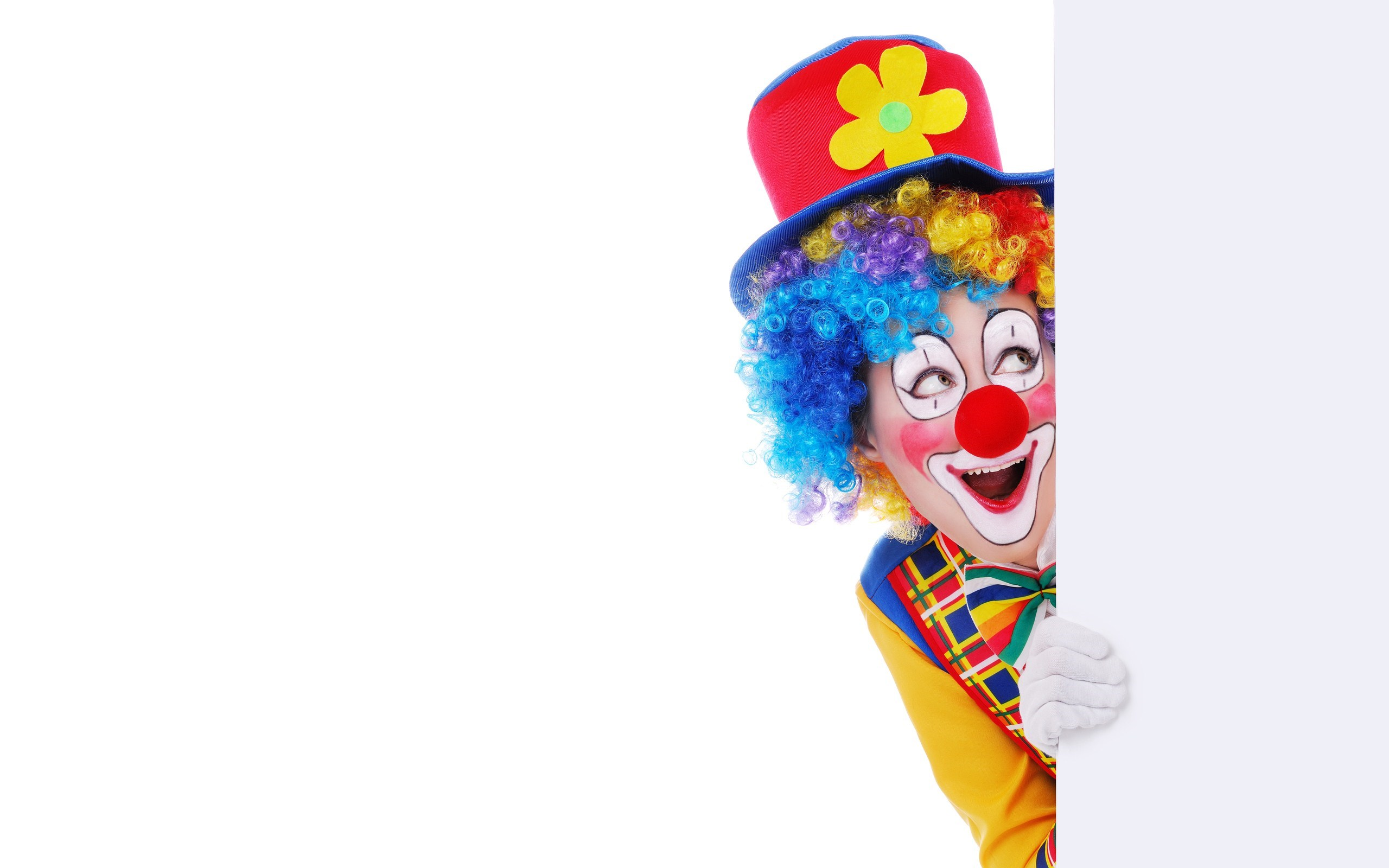 Colorful Clown Funny Smile White Wooden Board   HD wallpapers 2560x1600