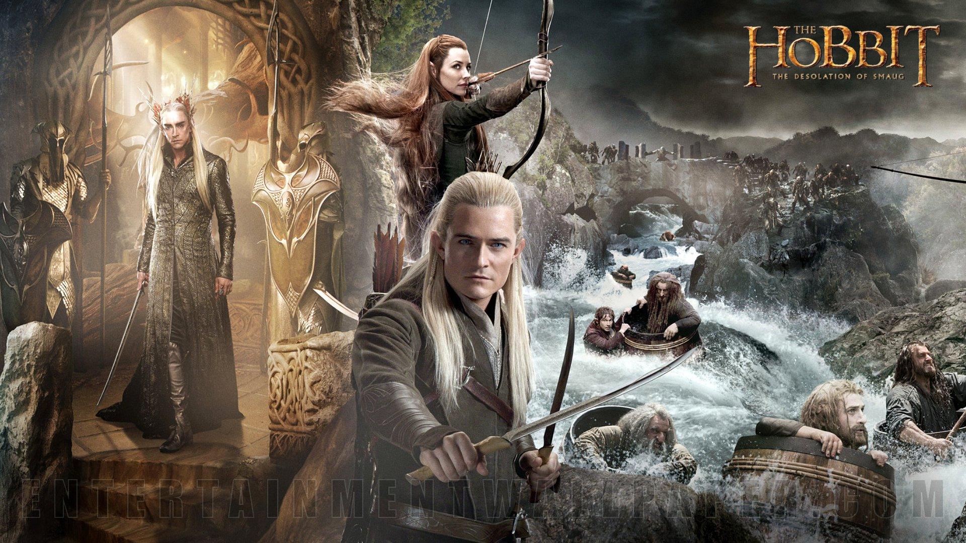 The Hobbit The Desolation Of Smaug Wallpaper 1920x1080 HD 1920x1080