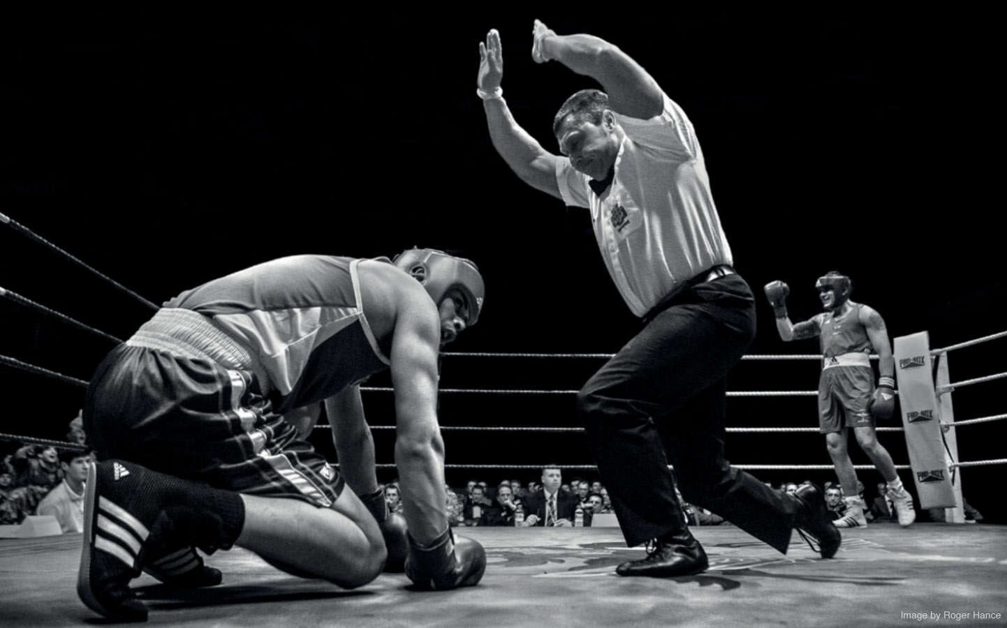 Sport Wallpaper Boxing: Boxing Wallpapers HD
