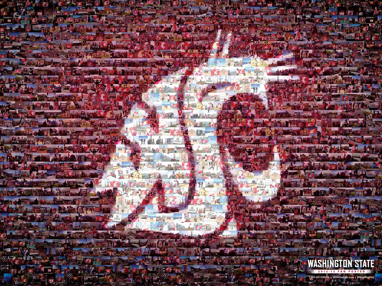 University Of Washington Wallpaper httpwwwreproductive fitnesscom 1280x960